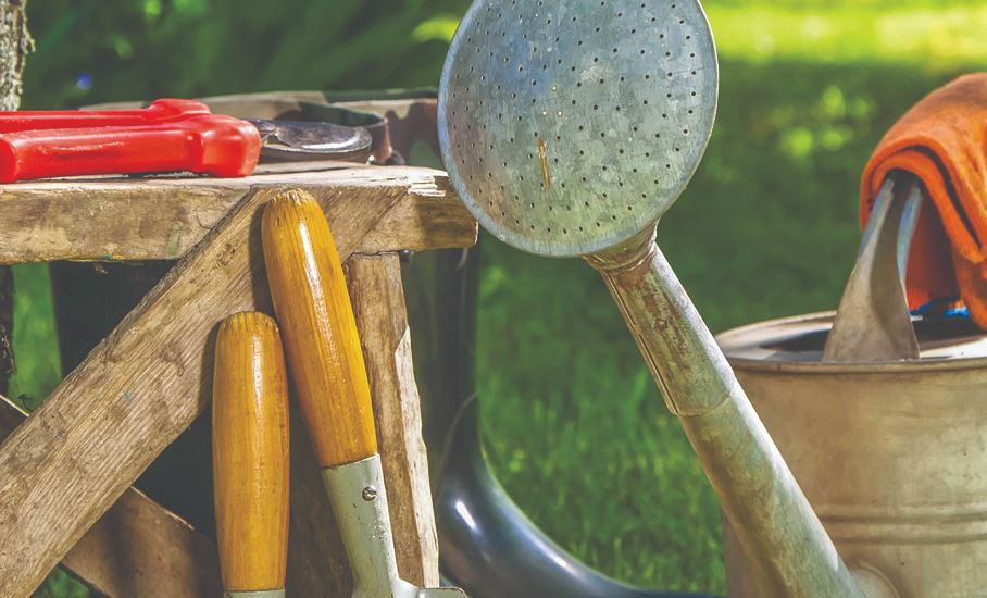 6 Essential Gardening Tools That Every Home Gardener Needs